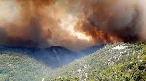 Osmaniye'de orman yangını - Son dakika haberleri