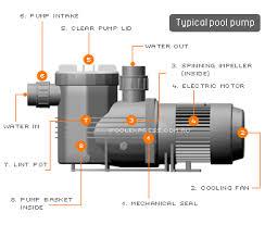 pool timer wiring diagram intermatic images hayward pool pump wiring diagram lzk gallery