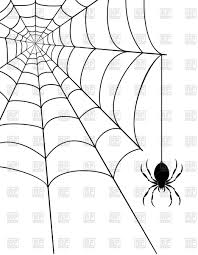 Spider And Spider Web On White Background Vector Illustration Of
