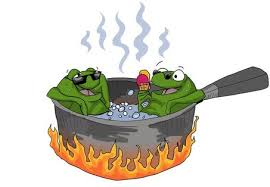 "Image result for ""We're All Frogs In Boiling Water"