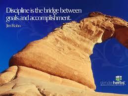 discipline is the bridge between goals and accomplishment jim discipline is the bridge between goals and accomplishment jim rohn