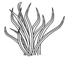 Small Picture Animal Food Grass Coloring Pages Color Luna