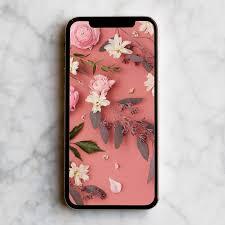 flower wall paper download pink flowers mobile desktop wallpaper front main