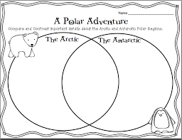 Buzzing About Second Grade: The Polar Regions