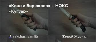 «Кошки Бирюкова» ― НОКС «Кугуар»