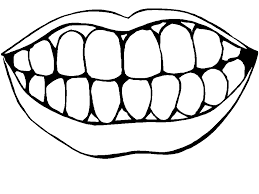 Small Picture Tooth Coloring Pages GetColoringPagescom