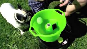 oggo fetch machine automatic ball thrower for dogs