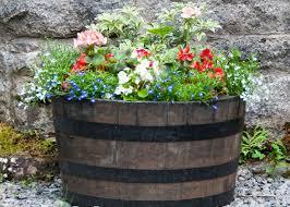 barrel garden. Flowers In Garden Barrel R