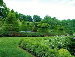 ladew topiary gardens maryland topiary gardens