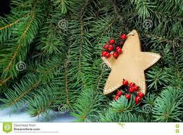 Weihnachtsstern Auf Dem Weihnachtsbaum Symbol Der Hoffnung