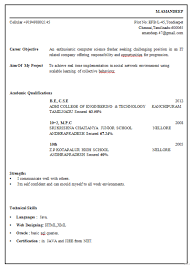 Resume Example For Freshers Computer Engineers   Templates Template net Objective For Fresher Resume In Computer Engineering
