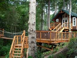 Exterior:Unique Diy Treehouse Design With Classic Hip Roof And Timber Walls  Splendid Diy Treehouse