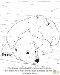 Small Picture Free Polar Bear Coloring Page Printable Polar Bear Coloring Pages