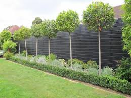 ... Stylish Design Ideas Decorative Garden Fencing Fence Panels Will Help  You Enjoy Summer In The ...