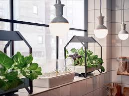indoor gardening. Indoor Gardening