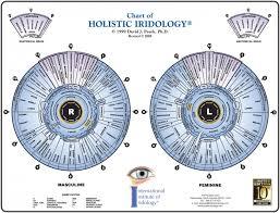 Iridology Eye Chart Free Download Iriscope Iridology