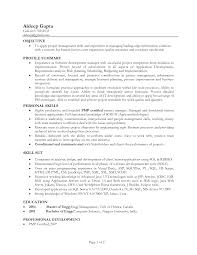 Profile Sample Resume It Resume Profile Examples Resume Profile