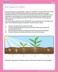 Life Cycle of a Plant - Free Science Worksheet for 2nd Grade ...
