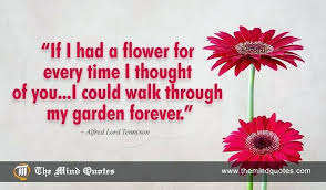 Flowers Love Quotes Gorgeous Flowers For Love Quotes Together With Lord Quotes On Flower And Love