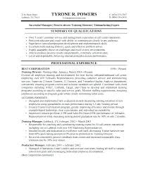 State Auditor Sample Resume Amazing It Audit Resume State Auditor Cover Letter Cv Audit Big 48