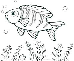 Free Fish Coloring Pages Printable Free Printable Coloring Pages For