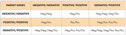 Expert Blood Group Chart Parent Child Baby Gender Prediction