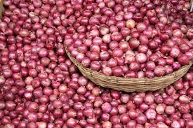 Image result for onion farming