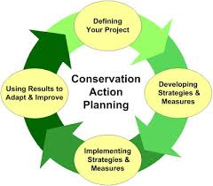Conservation Action Planning Cnhp Blog