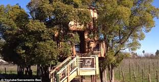 pete nelson s tree houses. Dramatic: The Threehouse Is Supported By Concrete Posts, Fully Plumbed And Has Electricity Pete Nelson S Tree Houses