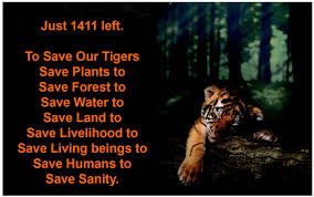 save plants essay essay on save nature and save life