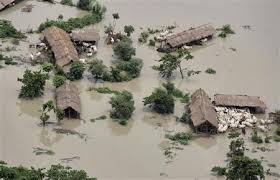floods kill in s assam state domesticated animals are seen near flooded houses in the sonitpur district of the northeastern n state of assam 1 2012 stringer