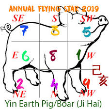 2019 Flying Star Xuan Kong
