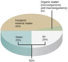 Soil Percentage Chart The Soil Boundless Biology