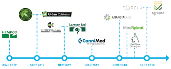 Cannimed Stock Chart Aurora Cannabis Savvy Deal Making And Good Timing Aurora