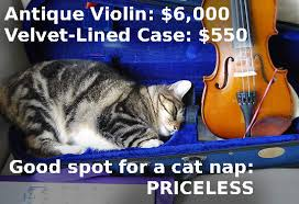 Antique Violin Cat Meme - Cat Planet | Cat Planet via Relatably.com