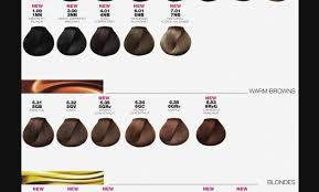 Loreal Hicolor Colour Chart Copper Loreal Majirel Color Chart Hair Coloring