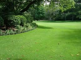O período é apropriado para o plantio de grama e plantas ornamentais. Como Plantar Grama Sao Carlos Aprenda Tudo Passo A Passo