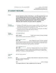 Examples Of College Student Resumes Best Summary Examples For Resume Profile Of Resumes College Students Home