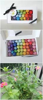 Rainbow Seed Bomb Homemade Gift Box - Unique Hostess Gift, Gardening Gift,  Stocking Stuffer