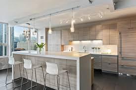 stone city design modern west loop condo kitchen