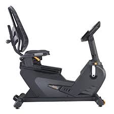 amazon com lifecore fitness 1060rb recumbent exercise bike lifecore fitness 1060rb recumbent exercise bike black frame