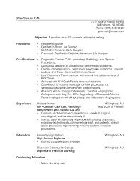 Icu Resume Sample