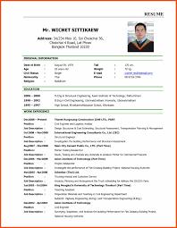 Cv Job Application Example Resume Pattern For Job