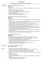 Sales Account Manager Sales Manager Resume Samples Velvet Jobs