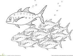 Fish Coloring Pages Printables Educationcom