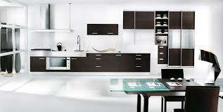 Beautiful Black And White Themed Kitchen Nice Design