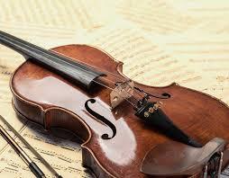 Znalezione obrazy dla zapytania viola
