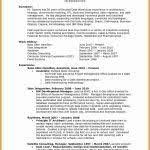Executive Hybrid Resume Template New Small Business Resume Template ...