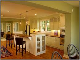 Small Picture Kitchen Paint Color Ideas With Light Oak Cabinets Painting