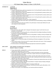 Auditor Resume Sample Auditor Resume Samples Velvet Jobs 22